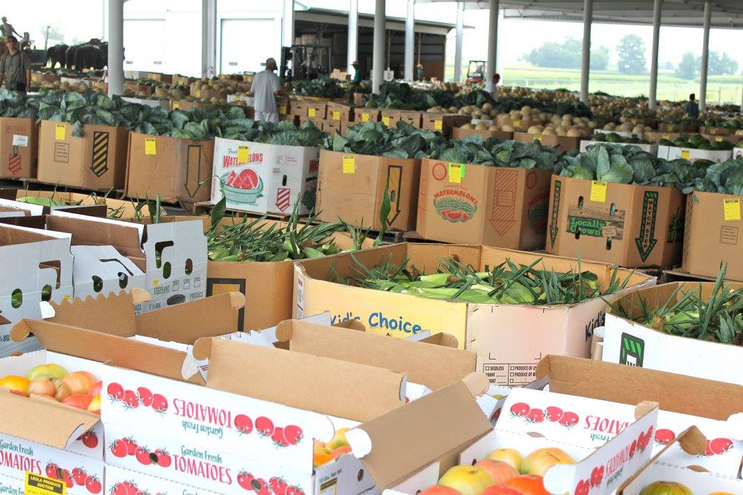 Chester County Food Bank Always Wins Big at Produce ...