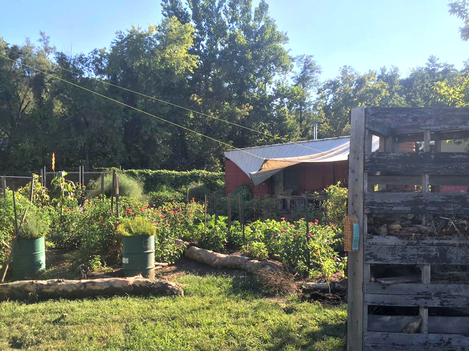 Bankfirst Winter Garden Part - 42: Mogreena Consists Of Nearly Half An Acre Of Container Garden Plots,  Peppered Across The Old Industrial Property. The Garden Manager Is Paul  Wilkinson, ...